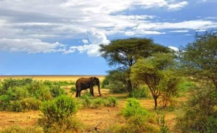 9-day Best of Tanzania Exclusive